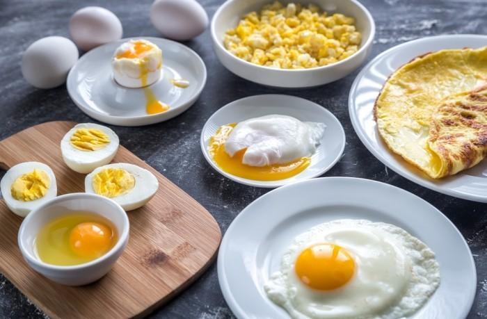 Eier Biotin den Metabolismus