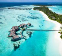 Urlaub Malediven –gönnen Sie sich einen Traumurlaub auf den paradiesischen Inseln!