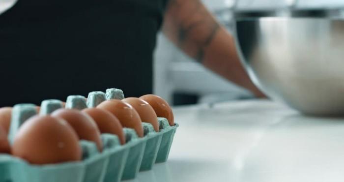 Farbe der Eierschale weiß oder braun nicht wichtig