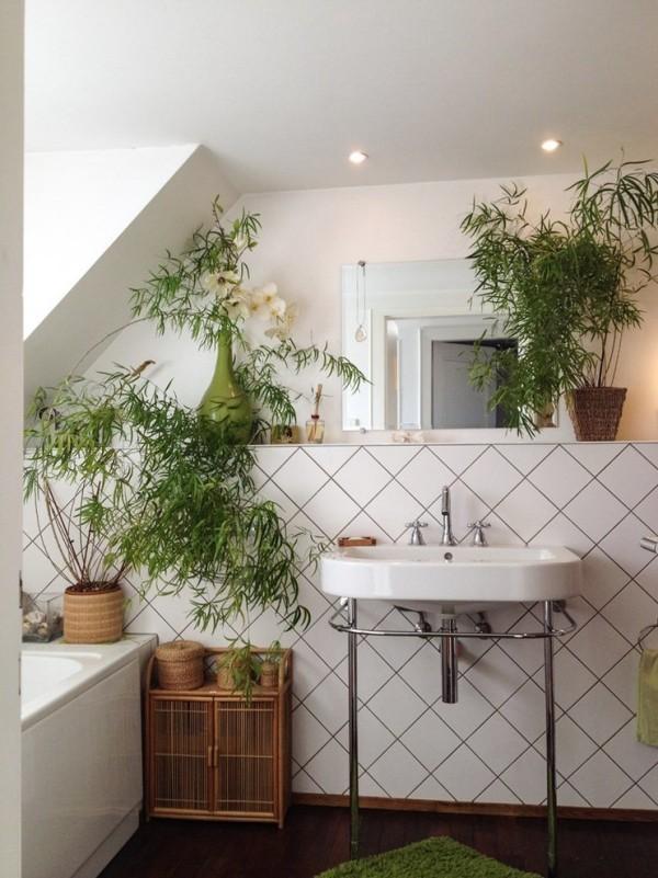 Grüne Pflanzen im Badezimmer