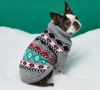 Christmas Sweater und noch mehr Ideen, die für festliche Begeisterung sorgen