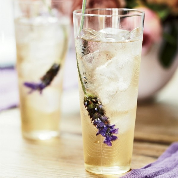 eistee mit lavender zubereiten fatburner rezepte