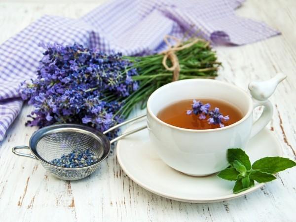 fatburner rezepte lavendel tee