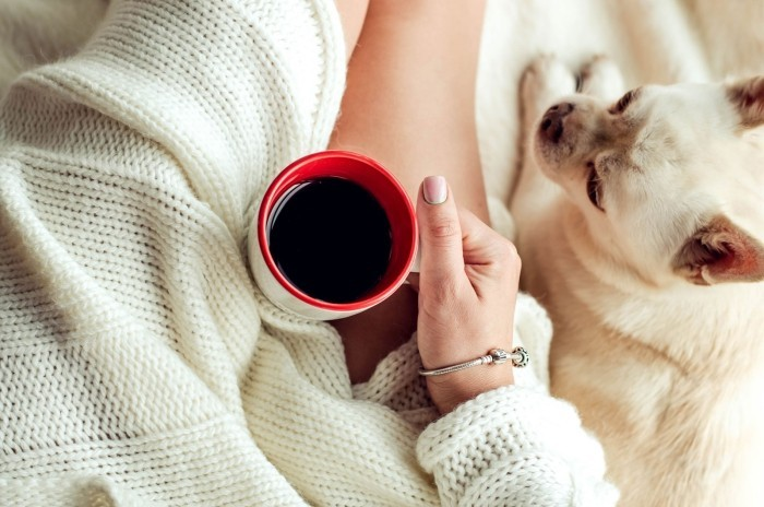 morgens Kaffee