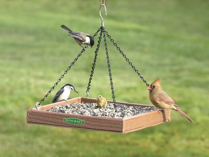 vogelfutterhaus selber bauen haengend