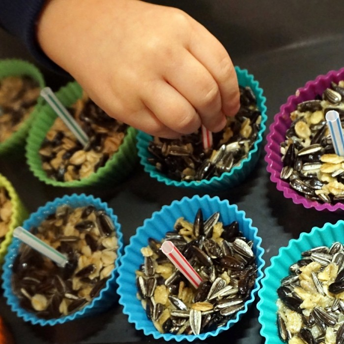 vogelfutterhaus selber bauenlandeplatz cupcakes schalen