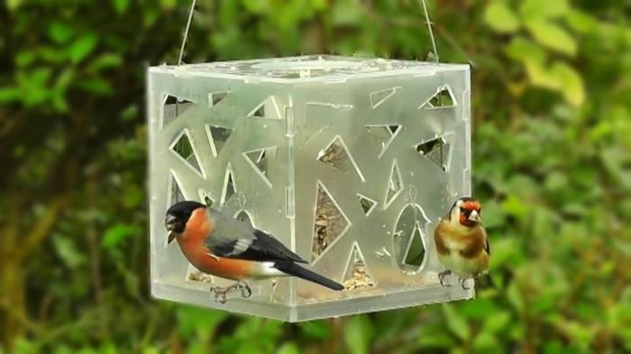 vogelfutterhaus selber bauenlandeplatz plexiglas