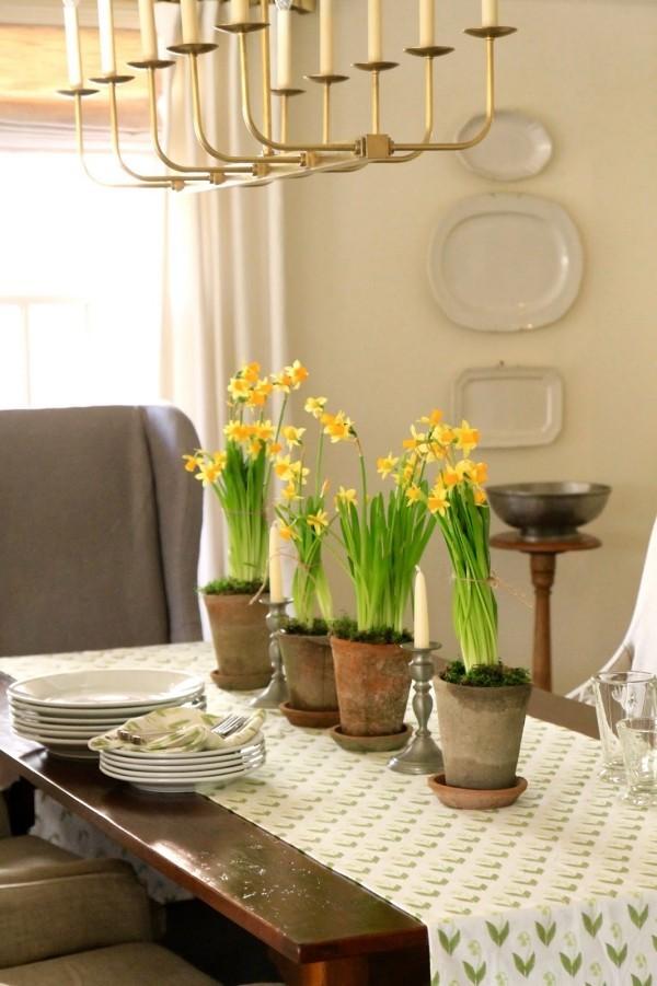 Frühlingsblumen Narzissen im Topf