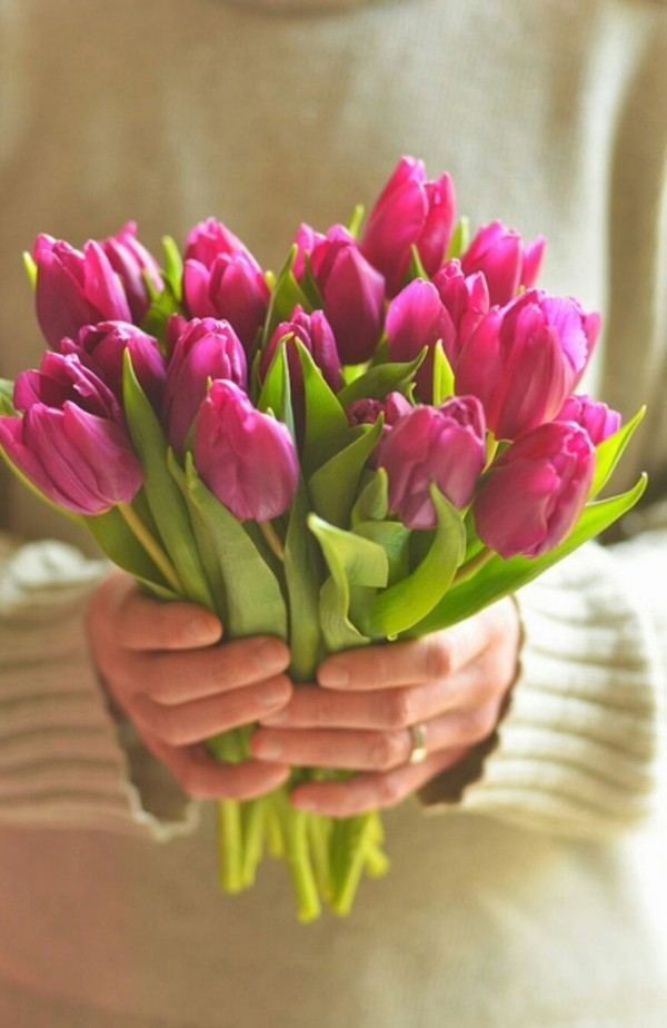 Frühlingsblumen Tulpen ideen