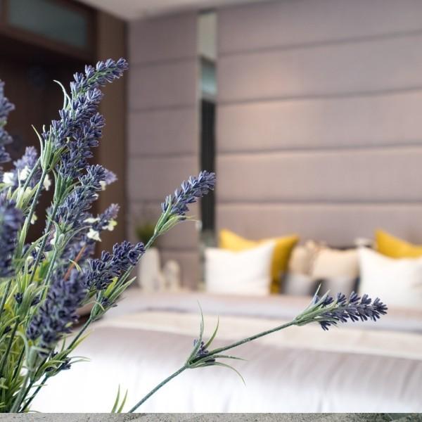 Lavendelduft sehr beruhigend im Schlafzimmer besser schlafen