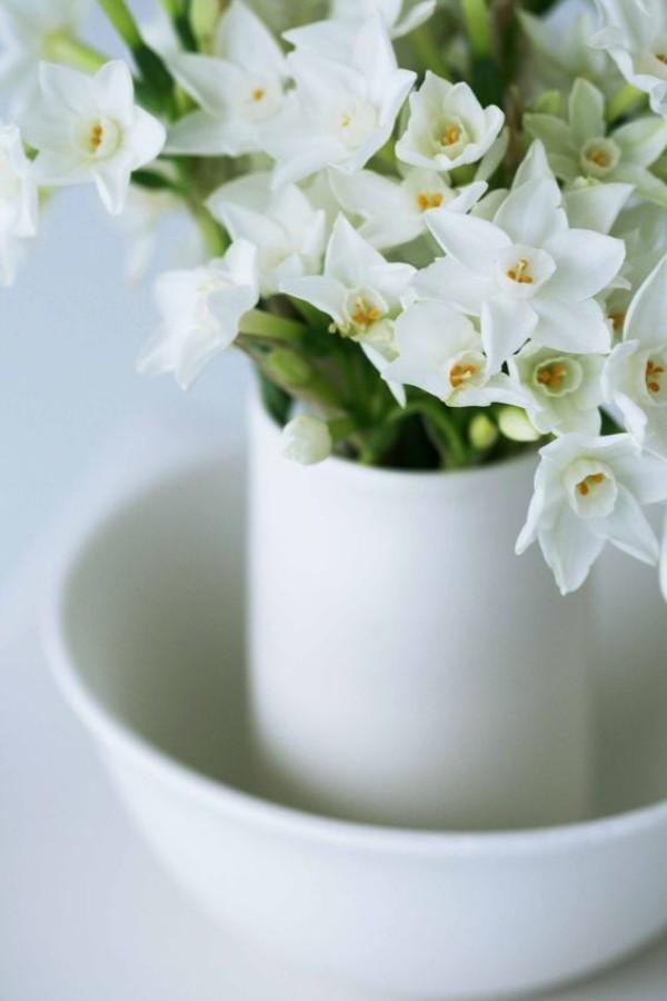 Narzissen in weißer Vase