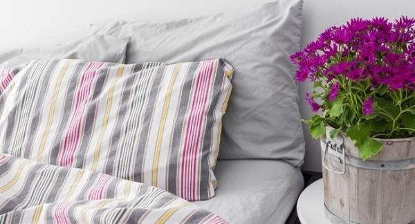 Zimmerpflanzen duftende Blumen besser schlafen nachts