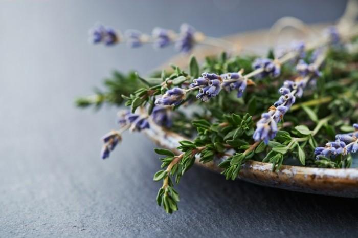 frrische blüten lavendelöl selber machen