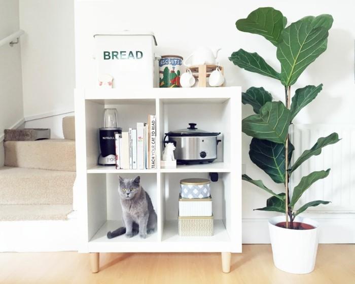 ikea kallax wall cat shelf