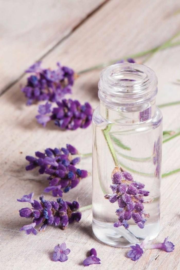 lavendelblüten im glas lavendelöl selber machen