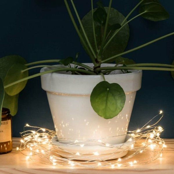 lichterketten dekoideen zimmerpflanze dekorieren