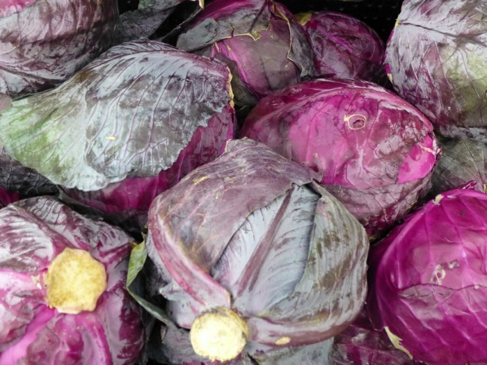 sauerkraut gesund rotkohl