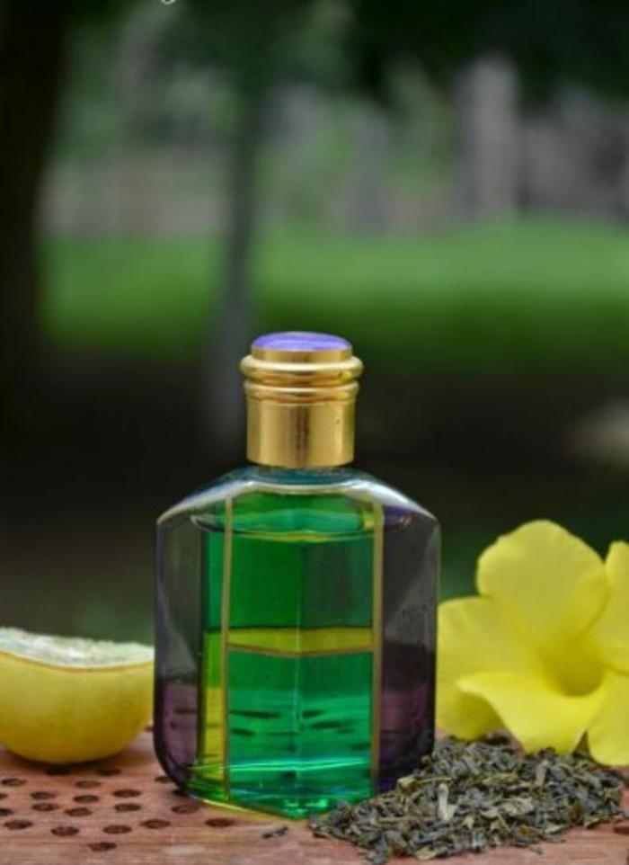 shampoo selber machen natuerlich kokos lavendel