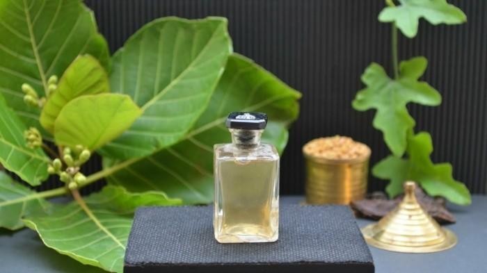 shampoo selber machen natuerlich walnuss blatt feigenblatt
