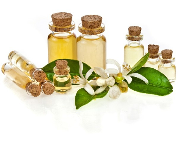 thymian myrte balsam ätherisches Öl in Fläschchen