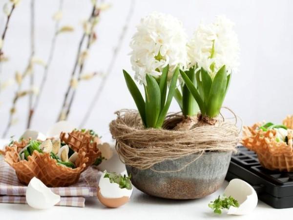 tischdeko ostern weiße hyazinthen tischdekoration