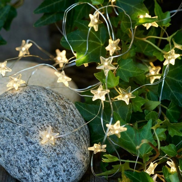 zimmerpflanzen dekorieren dekoideen mit lichterketten sterne