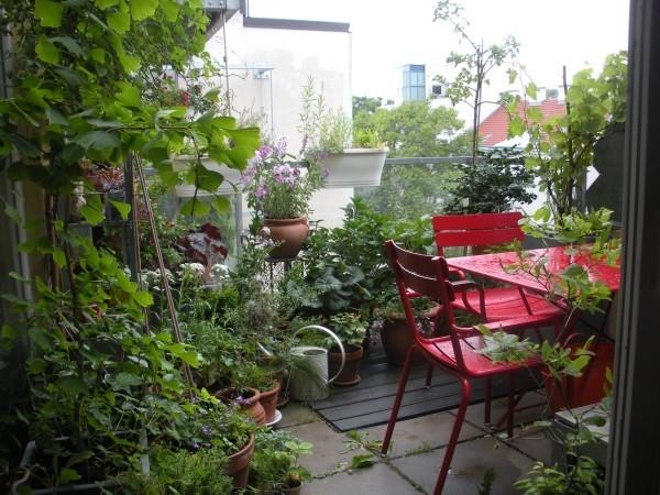 üppige stauden Balkon bepflanzen
