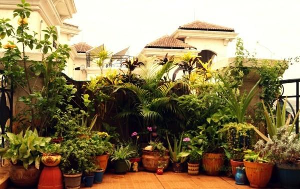 Balkon Garten kongtrastreicher effekt