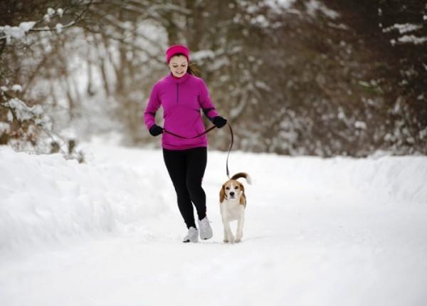 Gassi gehen macht Winter viel Spaß tut Seele Körper gut