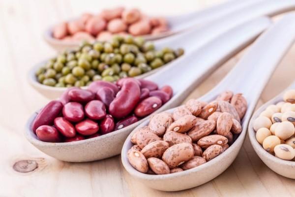 Gesunde Ernährung verschiedene Bohnenarten