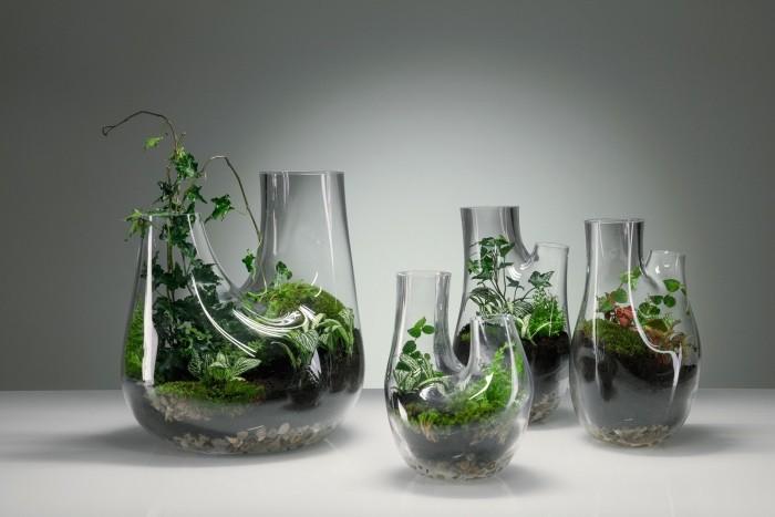 Pflanzen Terrarium drei gefässe