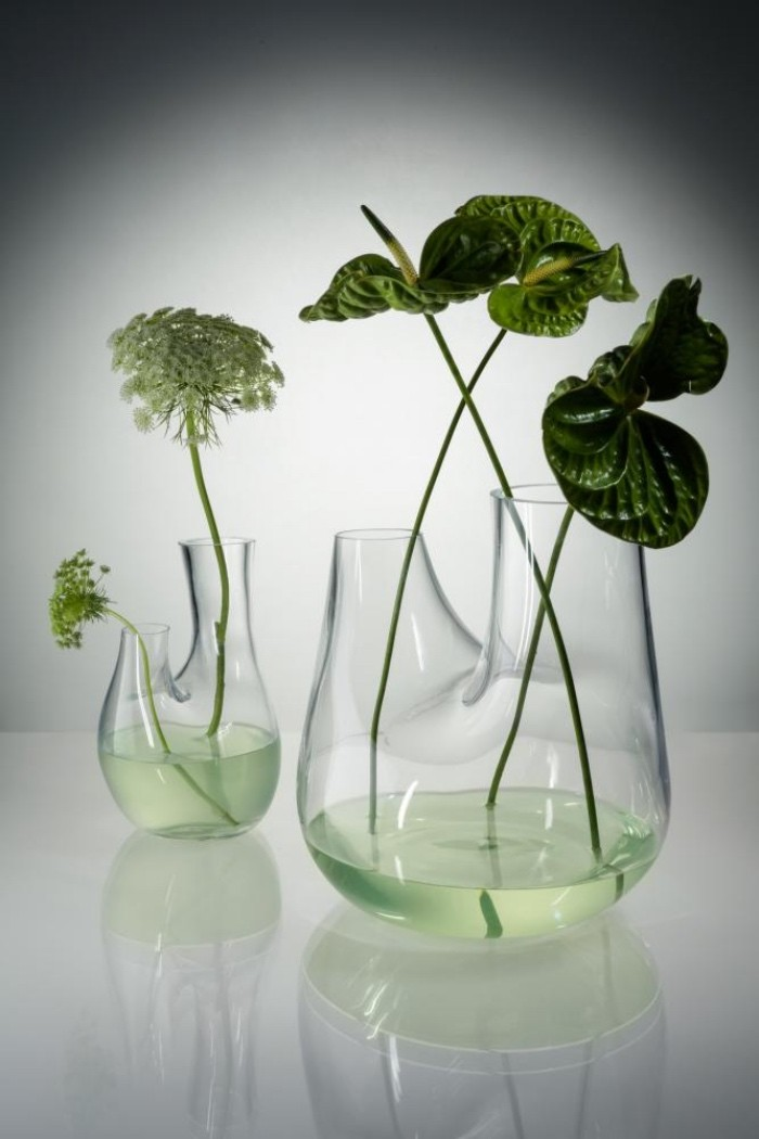 Pflanzen Terrarium schöne idee