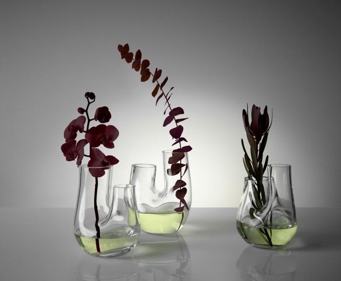 Pflanzen Terrarium vasen mit sukkulenten