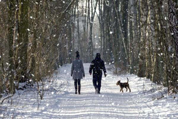Winterdepression