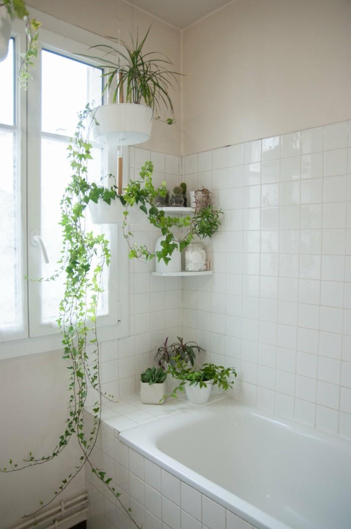 gruene pflanzen badezimmer gestalten efeu