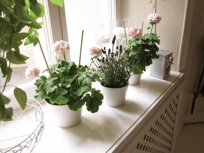 gruene pflanzen badezimmer gestalten geranie
