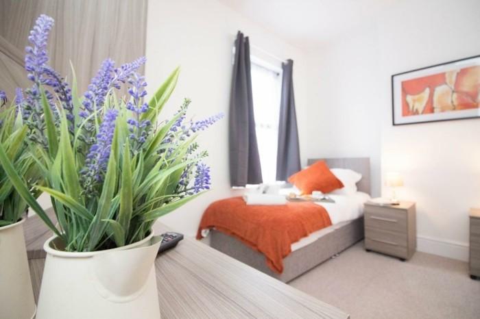 gr ne zimmerpflanzen und heilkr uter die unser schlaf positiv beeinfl ssen. Black Bedroom Furniture Sets. Home Design Ideas