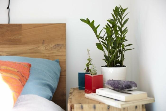 Gr ne zimmerpflanzen und heilkr uter die unser schlaf - Zimmerpflanzen schlafzimmer ...