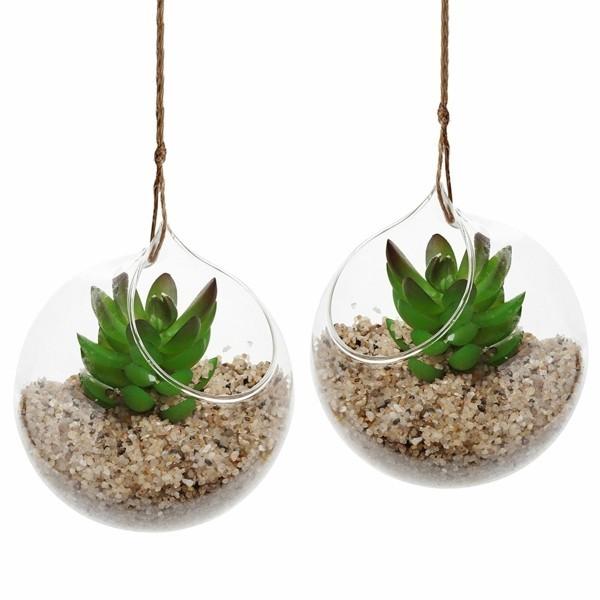 hängende deko pflanzen terrarium