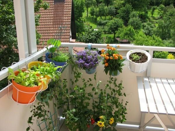mehrere verschiedene Pflanzer auf einem Balkon Garten
