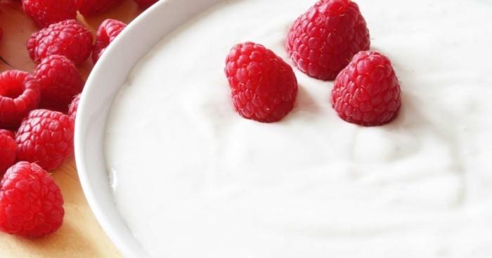 naturjoghurt darmsanierung probiotika körper entschlacken