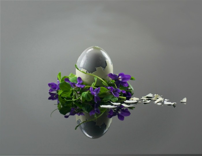 fruehjahrsblueher tulpen weiss veilchen