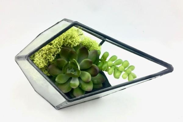 pflanzen terrarium eckige moderne form