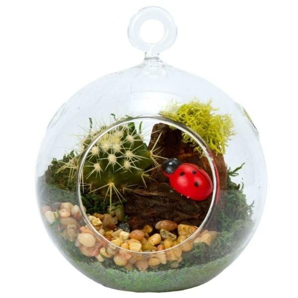 pflanzen terrarium mit möglichkeit zum aufhängen