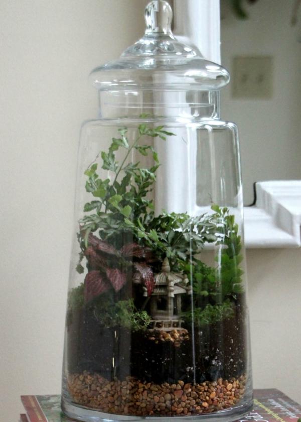 Pflanzen Terrarium Selber Machen Schritt F 252 R Schritt
