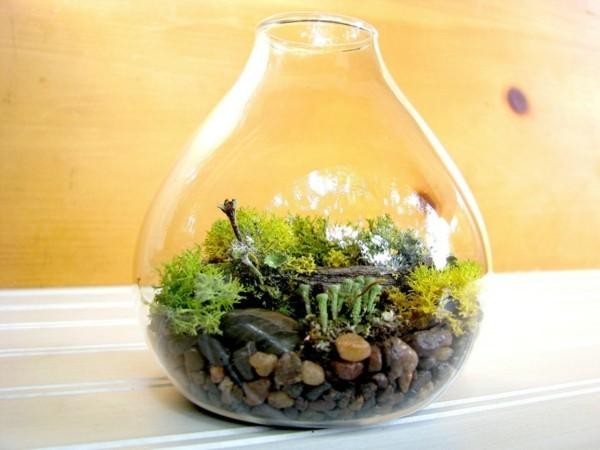 pflanzen terrarium sich nach unten verjüngend