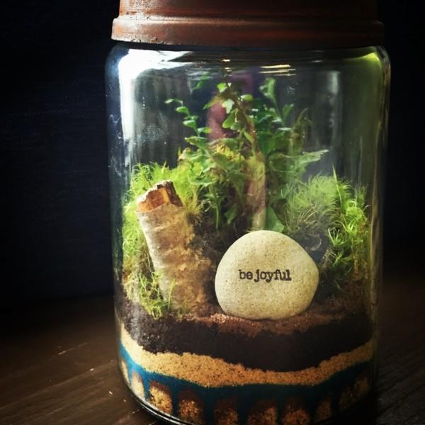 pflanzen terrarium tolle steine