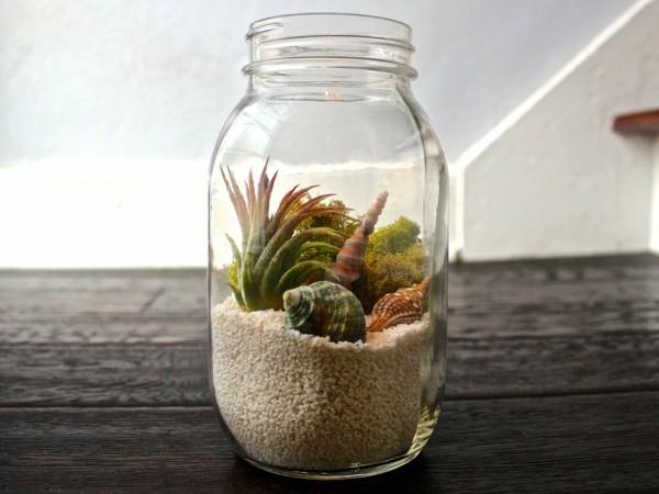pflanzen terrarium tolles glas