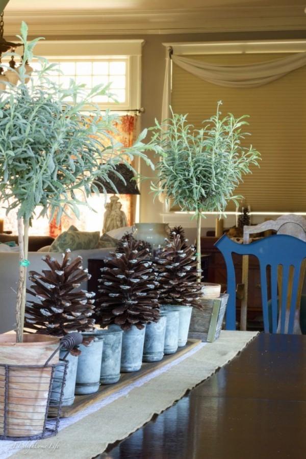 rustikale deko zapfen pflanzen garten dekorieren