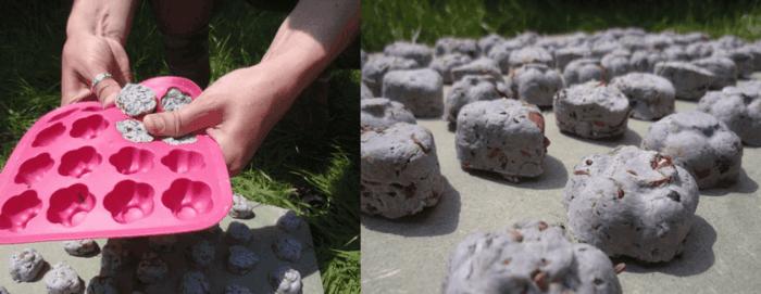 samenbomben selber machen silikonform ideen garten